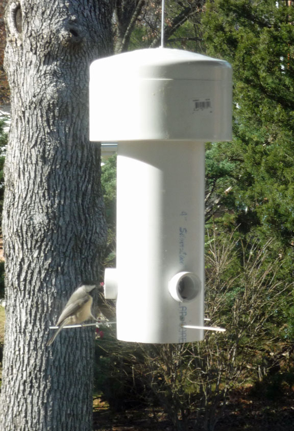 grant maclaren 39 s squirrel proof bird feeder